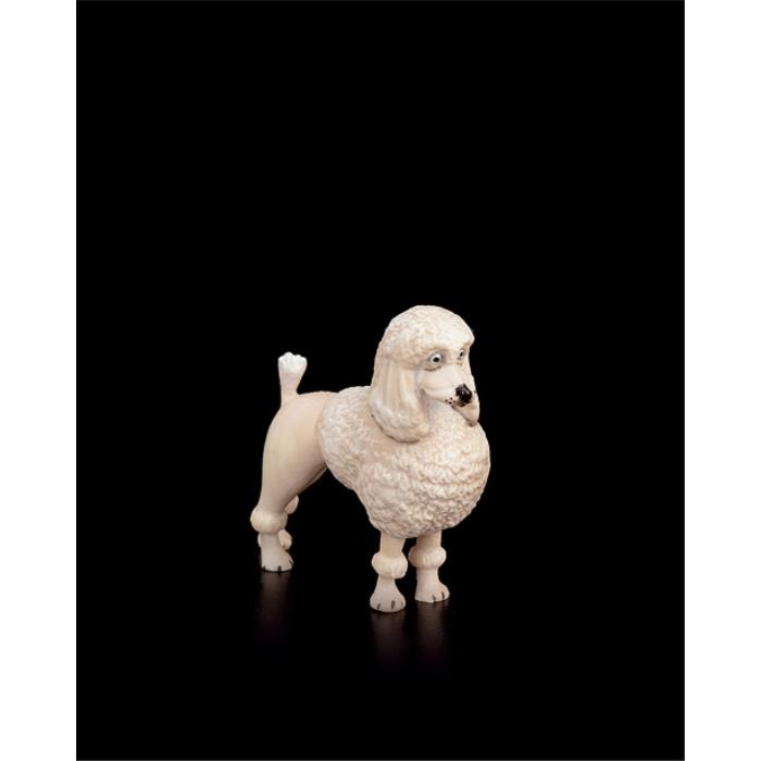 Poodle (without pedestal in plexiglas)