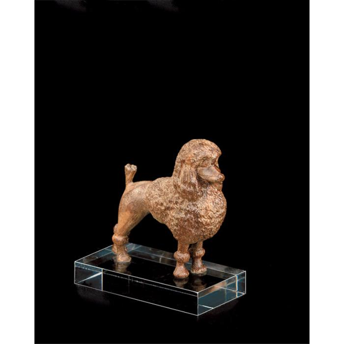 Poodle (with pedestal in plexiglas)