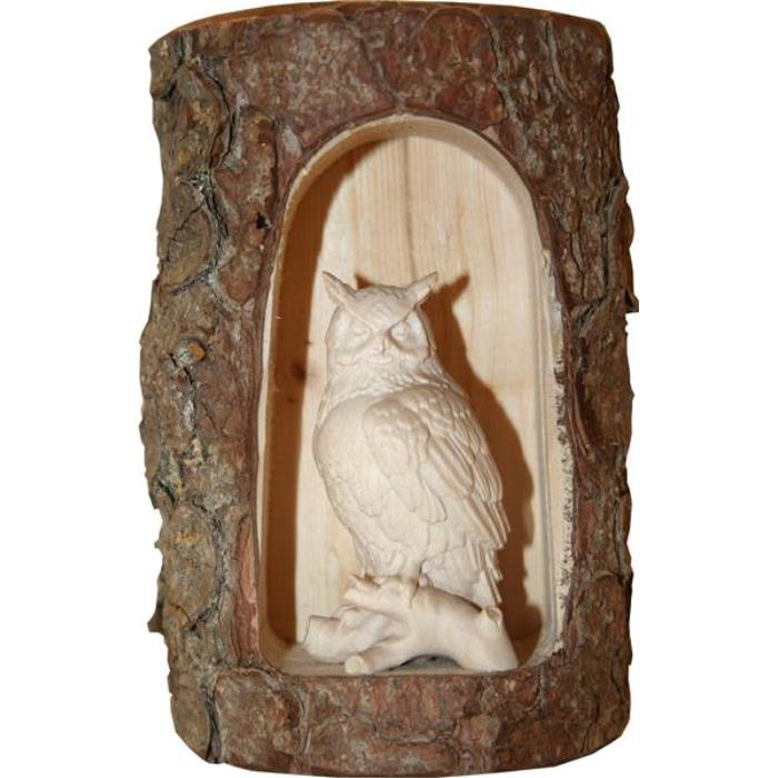 Owl on tree in cave